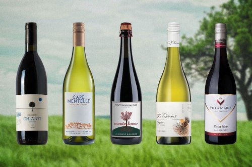 """The Deal With """"Sustainable"""" Wine, And the 20 Best Bottles Under $20"""