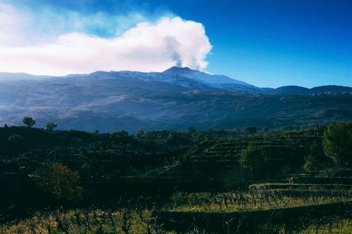 Why You Should Be Drinking Wine Made on Volcanoes