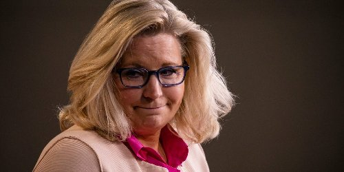 Jeb Bush, Trump's ex-homeland security chief, and Elon Musk's brother top the list of donors who have quietly given campaign bucks to Liz Cheney