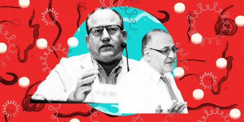 2 fringe doctors created the myth that ivermectin is a 'miracle cure' for COVID-19 — whipping up false hope that could have deadly consequences