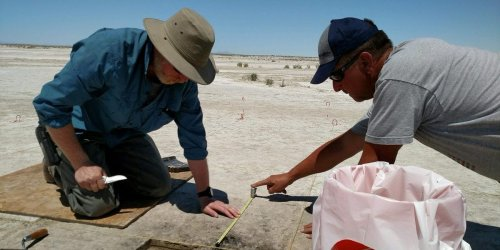 Earliest evidence of tobacco used by hunter-gatherers in the US West 12,000 years ago, discovered by archaeologists