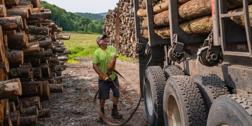 Vermont has a new solution to tackle the labor crunch: It will pay you $7,500 to move and work in one of its most in-demand jobs