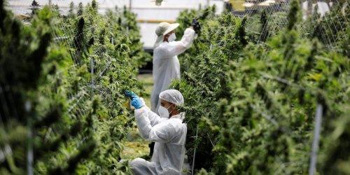 Canadian cannabis giant Cronos is making moves to enter the US. Its $110 million deal with PharmaCann would give Cronos access to New York's $7 billion market.