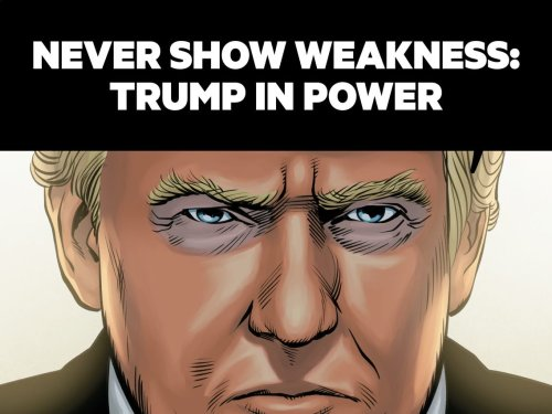 DONALD TRUMP'S FIRST TERM: The graphic novel