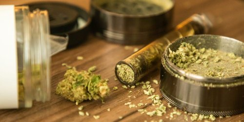 Why experts say there's no difference between indica and sativa weed anymore