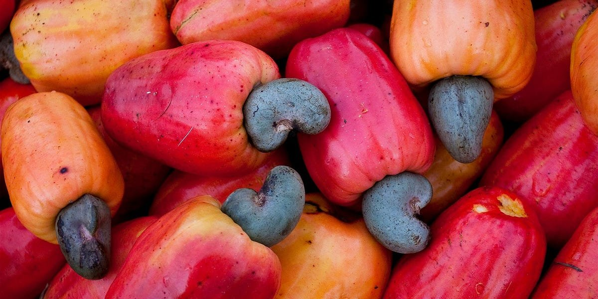 Why Cashew Nuts Are One of the Most Expensive Nuts on the Market