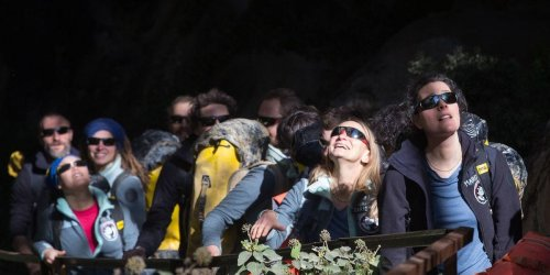 French volunteers who lived in a cave with no phones, clocks, or sunlight for 40 days say it was 'great'