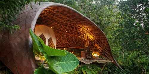 How a former DKNY designer launched an architecture firm in Bali that builds modern, million-dollar jungle mansions out of bamboo