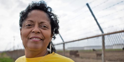 A schoolteacher in Louisiana's 'cancer alley' has won a 'Green Nobel' for stopping companies from building chemical plants on the Mississippi River