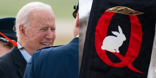 QAnon followers think a cicada landing on Biden may be a veiled communication from Q