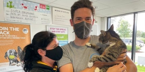 Forbes, the cat, reunited with his delighted owners after going missing for 10 years