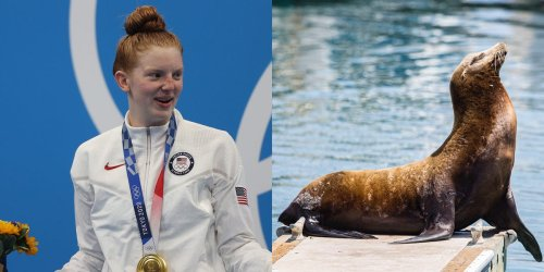 Neighbors of 17-year-old Alaskan swimmer who won a shocking gold medal tell tourists she trains with whales and sea lions