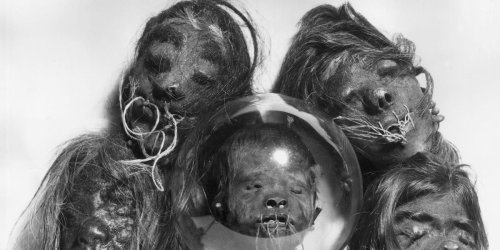 Study finds shrunken head prop used in 1970s John Huston film is actually a real human head