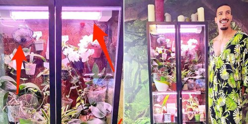 People are turning a $200 Ikea cabinet into DIY greenhouses for indoor plants, and a man with 40 plants showed us his genius hack