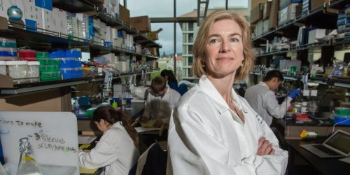 5 takeaways from Walter Isaacson's best-selling book on Jennifer Doudna, the scientist who won a Nobel for her gene-editing tech that's reshaping biotech's future