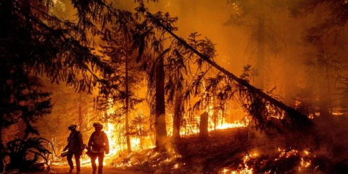 Photos show scorched earth and destruction as California battles one of the largest wildfires in state history