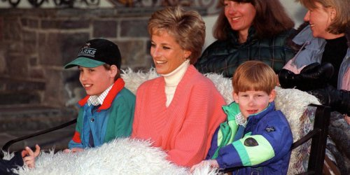 Princess Diana told a friend in the final phone call before her death she wanted to reunite with Prince William and Prince Harry