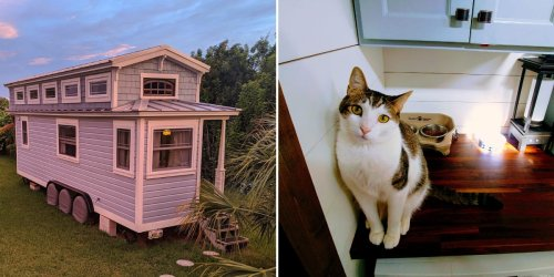 A tiny-home owner uses a genius storage hack to keep his cat's litter box out of sight