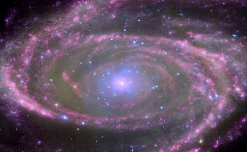 Every Black Hole Contains a New Universe