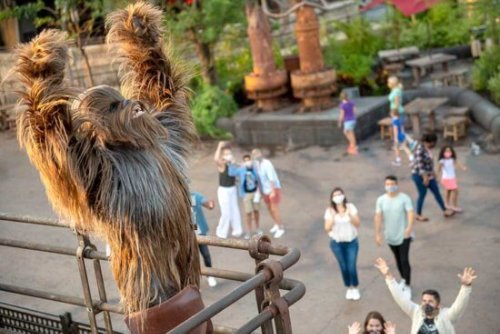 WATCH: Stormtroopers Barge Into Oga's Cantina at Disneyland