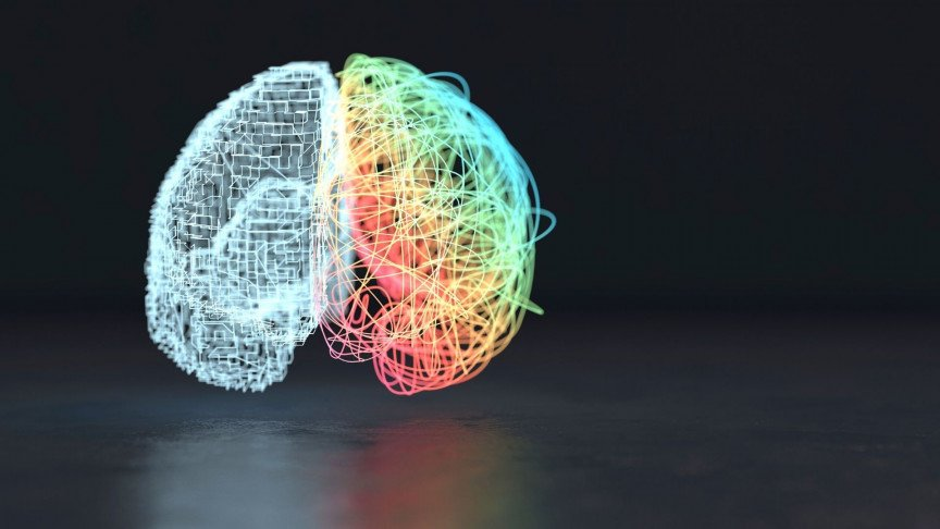 Scientists Say They Discovered the Gateway to Consciousness in the Brain