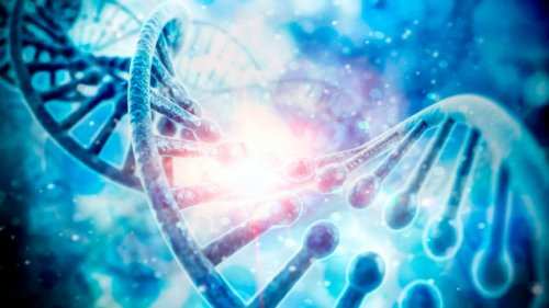 Scientists May Have Uncovered 'Life's Missing Link' in a New Experiment