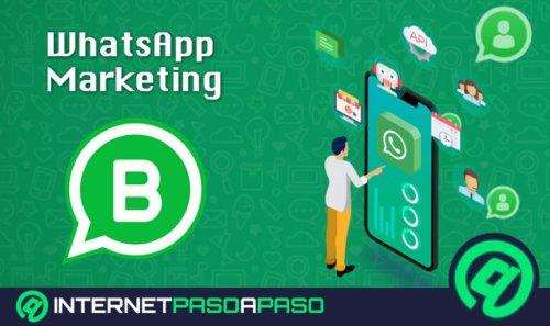 WhatsApp Marketing ¿Qué es y cómo usar WhatsApp Business para hacer campañas de marketing efectivas?