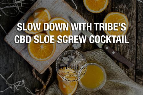 Slow Down With Tribe's CBD Sloe Screw Cocktail