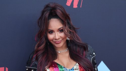 Nicole 'Snooki' Polizzi Returns to 'Jersey Shore' 1 Year After Quitting the Series