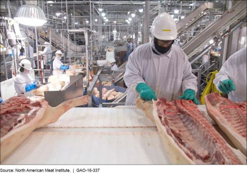 Union files OSHA complaint against one of the largest pork plants in the country