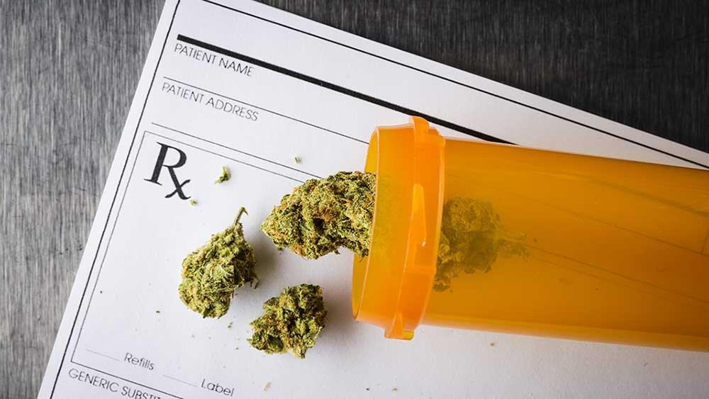 Marijuana News - cover