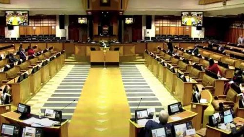 WATCH: MP's remarks on polyandry leaves DA's Mazzone enraged in Parliament