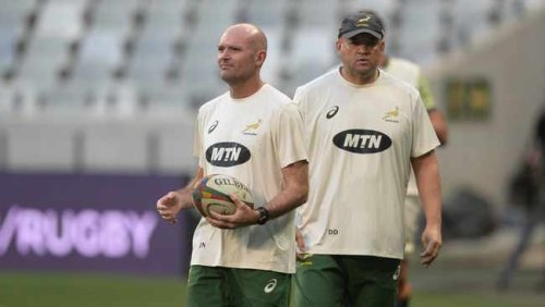 'Expect the expected', from the Springbok, says coach Jacques Nienaber ahead of Wales clash