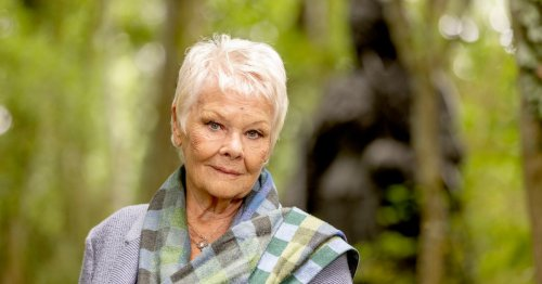 Judi Dench discovers where mother's Irish family came from