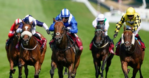 Goodwood Festival betting and odds: Five runners who will love soft ground