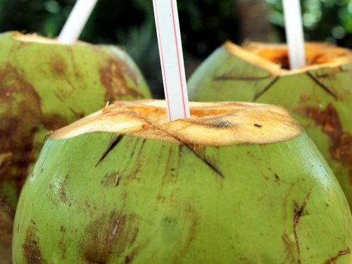 Our Picks for Best Coconut Water