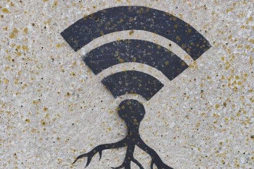 Box internet: fini les frais, ces 2 offres vont diviser sa facture internet 🔥