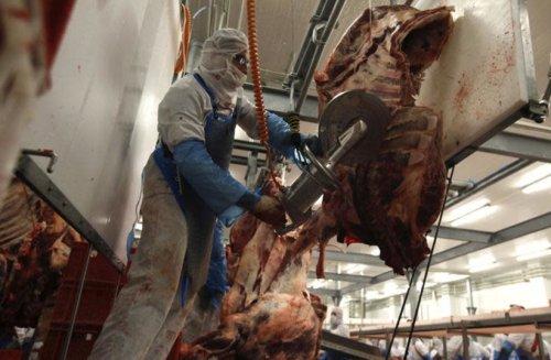 Greek court annuls permit for kosher, halal slaughter