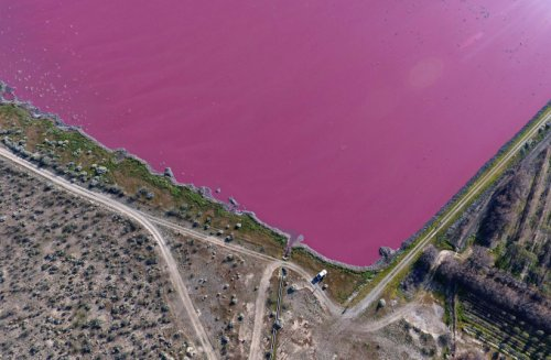 Argentina lakes turn pink but the outlook not rosy, environmentalists say