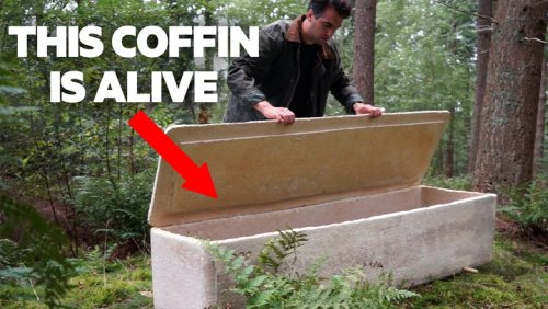 These eco-friendly coffins made of fungi are making death less toxic