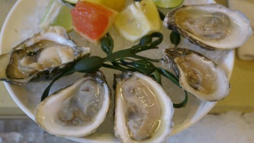Why we eat oysters alive