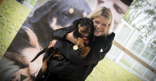 Tierischer Zuwachs: Klaudia Tanner taufte Rottweiler für das Heer