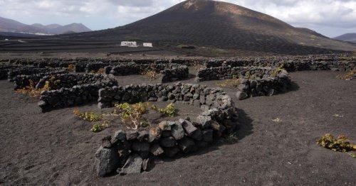 Kanaren kulinarisch: Die Aromen der Vulkaninsel Lanzarote