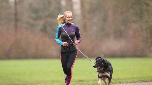 Sport mit dem Hund: Die besten Tipps