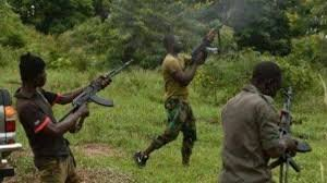 Bandits kill seven in fresh attack in Niger