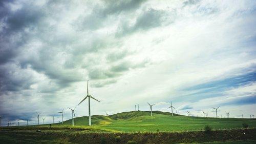 Nachhaltig arbeiten: Wie es gelingt, in grüne Jobs einzusteigen | karriere.de