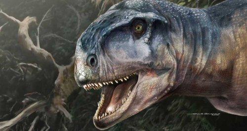 """Yeni Bir Etçil Dinozor Keşfedildi: Adının Anlamı """"Korku Salan"""" – Kayıp Rıhtım"""