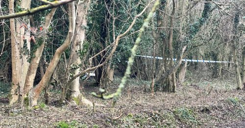 Human bones discovered in Biggin Hill 'belonged to middle-aged man'