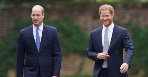 Harry and William's falling out began 'long before Meghan' royal insiders claim
