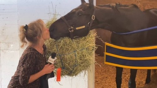Meet the breeder who sold the Kentucky Derby winner for $1,000. And is thrilled.